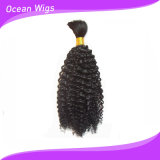 Unprocessed 100% Human Afro Curl Hair Bulk for Braiding (W-071)