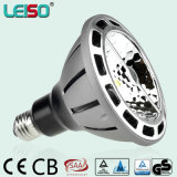 1200lm 3000k CREE Chip LED PAR38 Bulb of Leiso (LS-P720)