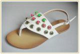Lady Fashion Dress Sandal Shoes