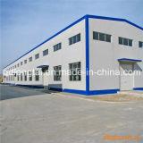 Crane Inside Steel Structure Frame Factory/Workshop Building (LTG879)