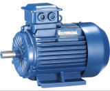 Ms Series Three-Phase Asynchronous Electric Motor