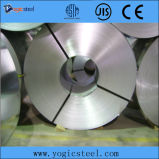 S350 Galvanized Steel Strips Coils (SGCC)