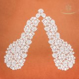 100% Polyesther Square Crocheted Embroidery Lace in Pair Collar Lace
