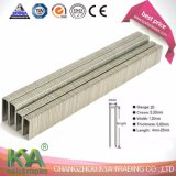 Prebna ED Galvanized Staples for Packaging, Roofing, Construction