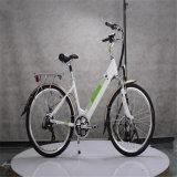 Hot Sale Hidden Battery E Bike (RSEB-303)