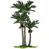 Hot Sale Simulated Curved Coconut Trees