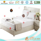Queen Size Bed Care Hypoallergenic Mattress Protector