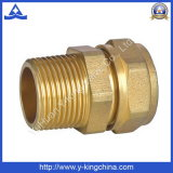 High Quality Brass Forging These Male Brass Fitting (YD-6013)