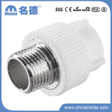 PPR Male Adapter Type E Fitting for Building Materials
