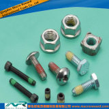 DIN En ASTM Stainless Steel Fastener Bolt Screw Nut Bud
