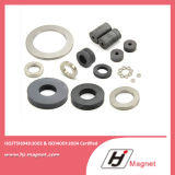 Super Strong Customized Need N35 N52 Ring Permanent NdFeB /Neodymium Magnet for Motors