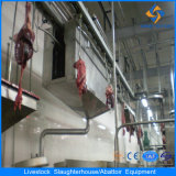 Pig Slaughter Equipment: Pre-Washing Machine for Live Pig