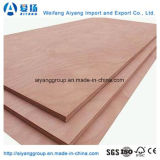 Commercial Plywood/Fancy Plywood for Furniture From Shandong
