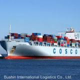 Shipping Freight Forwarder From China to Singapore