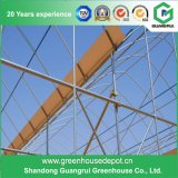 Hot Galvanized Steel Tubes for Greenhouse Construction