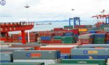 Lowest Sea Freight Consolidate Rate for LCL/FCL/Consolidation Shipping (E027)