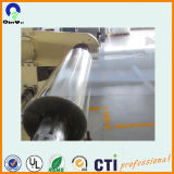 Plastic Pet Sheet Clear Pet Sheet for Vacuum Forming