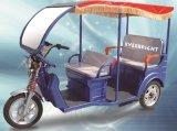 48V 800W Electric Rickshaw Tricycle
