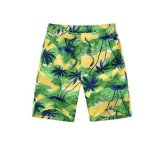 Hawaii Style Island Printed Shorts
