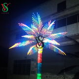 24V Outdoor LED Palm Tree Light