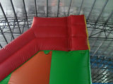 Inflatable Slide Bouncer (LY07114)
