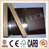 Qingdao Gold Luck Film Faced Laminated Plywood Sheet (QDGL150116)