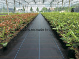 Black Color Control Biodegradable Weed Mat