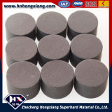 PCD Cutting Tools Blanks/PCD Drawing Mould