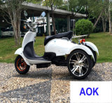 60V1000W Electric Motor Tricycle, Electric Powered Dirt Motorcycle