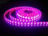 5050 SMD 395nm-405nm UV Blacklight LED Light Bar Purple Strip