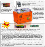 Capacity Intelligent Detected Motorcycle Batteries