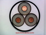 XLPE Insulated Power Cable (26/35kV CU/XLPE/PVC)