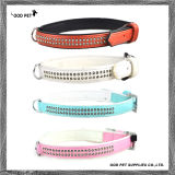 Crystal Rows Pet Products Pet Collars Dog Collar (SPC297)