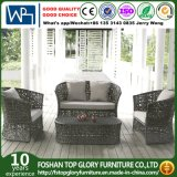 New Design Outdoor Rattan Sofa with Cushion Garden Furniture Leisure Sofa (TG-1502)