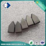 High Quality Sintered K20 C120 Tungsten Carbide Tips