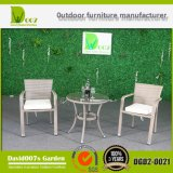 Furniture Rattan Style Round Dining Set for Garden