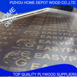 Building Material of Film Faced Plywood From Pizhou Factory