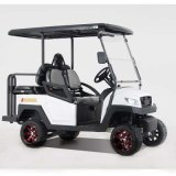 2017 New Electric Golf Cart for Sale