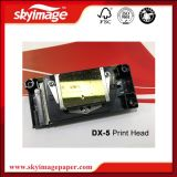 Dx-5 Print Head Golden for Mimaki Jv33/ Chinese Sublimation Printer