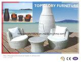 Garden Sofa Set Vase Wicker Sofa Outdoor Furniture (TGBS-012)