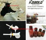 Kobold Poultry Animal Medicine Spray Head