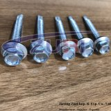Self Drillng Roofing Screw 14X2 Zinc Plated with EPDM Washer