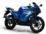 Rzm250f-5A Racing Motorcycle 150cc/200cc/250cc