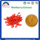 Plant Extract Goji Berries Extract