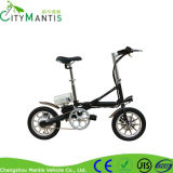 Electric Motorcycle (YZTD-7-14) Motorcycle with Brushless Motor