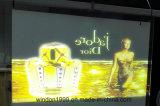 Light Gray Rear Projection Film, Rear Projection Screen Film