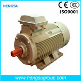 Ye3 High Efficiency Three-Phase Cast Iron Induction Electric Motor
