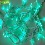 Bubble Shell IP65 Garden Decoration LED String Light From Factory