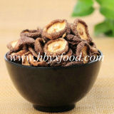 Bulk Dried Smooth Shiitake Mushroom with Cap 2-5cm Vegetable