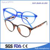 Personalized Design Tr90 Optical Frame Optics Reading Glasses